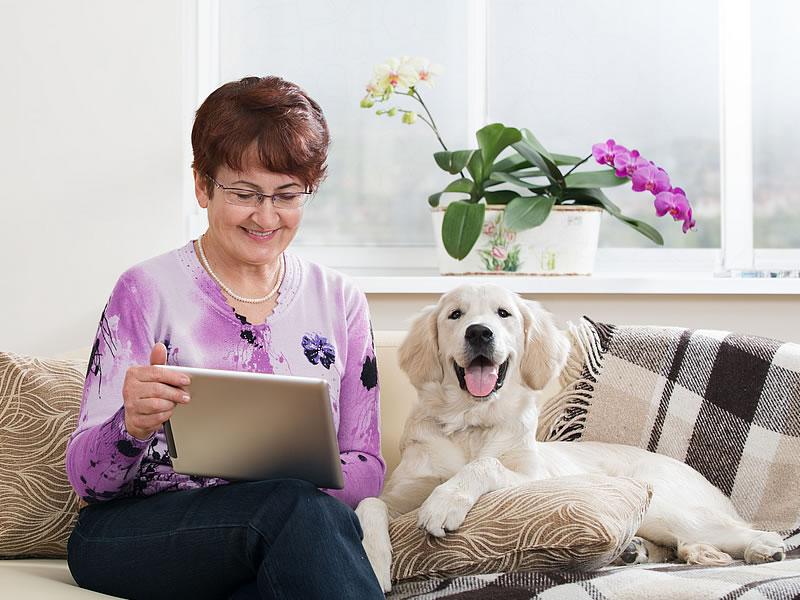 dog host carer